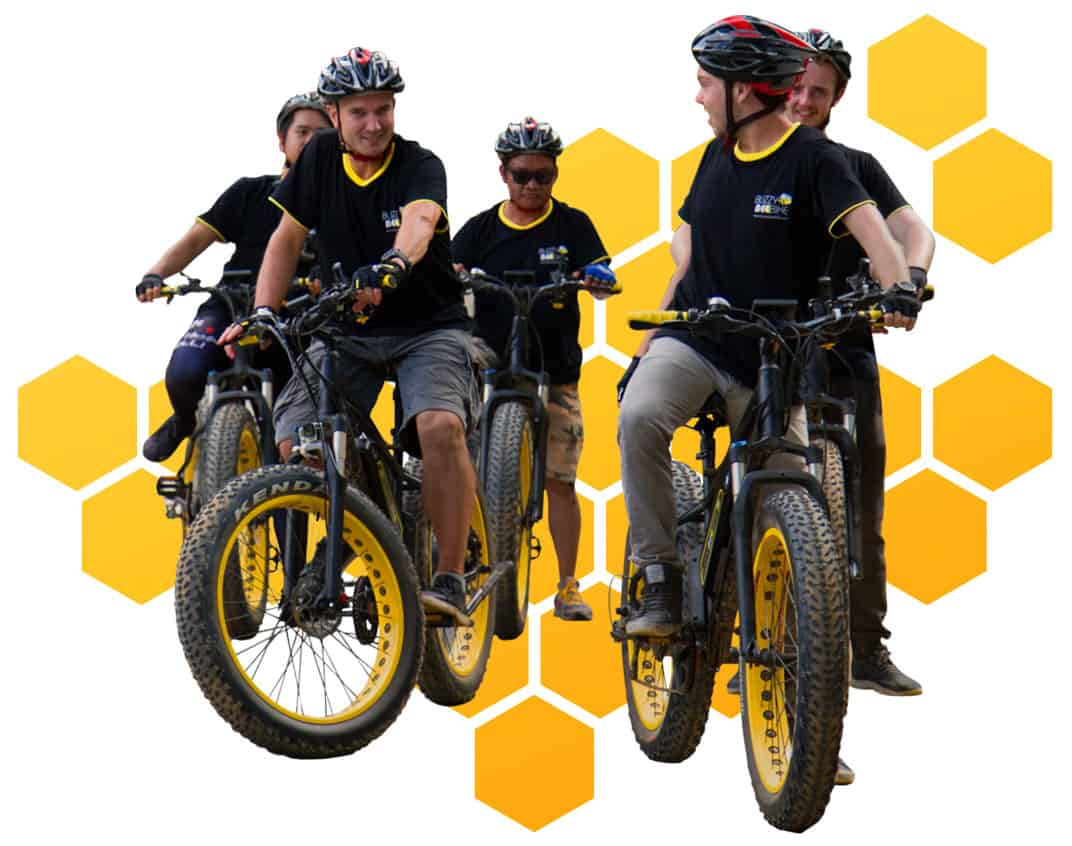 cyclists honeycomb | Buzzy Bee Bike, Chiang Mai, Thailand