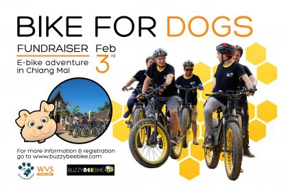 Bike For Dogs AD - Created Outline-01 small