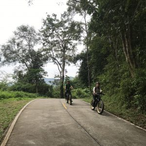 reaching the top of the hill | Buzzy Bee Bike, Chiang Mai, Thailand