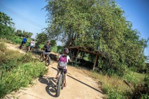 through the orchards on an E-bike | Buzzy Bee Bike, Chiang Mai, Thailand