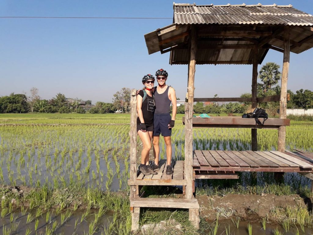 look over rice fields | Buzzy Bee Bike, Chiang Mai, Thailand