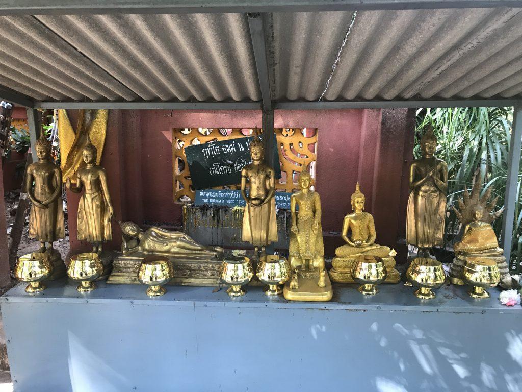 Buddha's at Wat Umong | Buzzy Bee Bike, Chiang Mai, Thailand